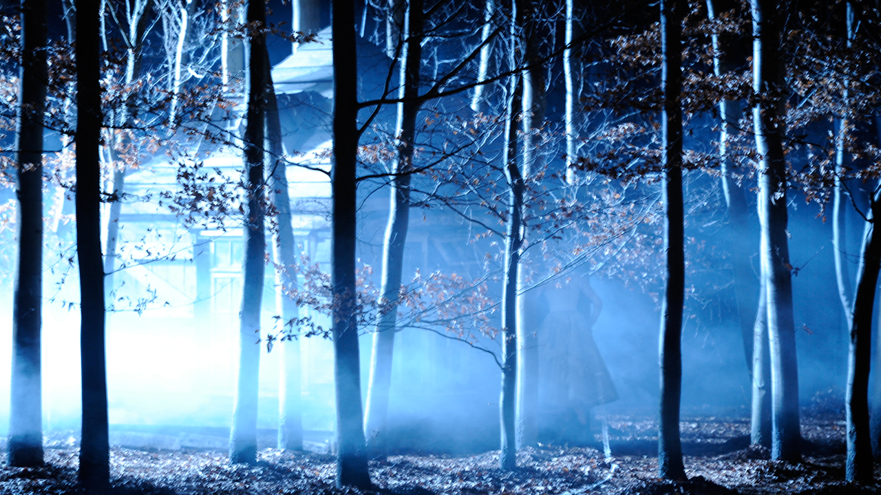 Forest with blue lighting throughout