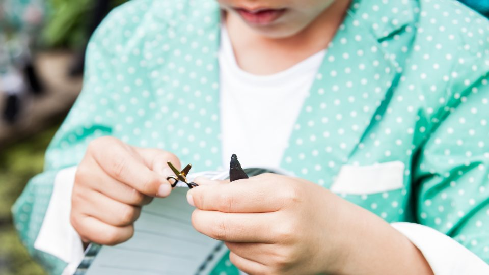 Child holding a pair of tiny scissors