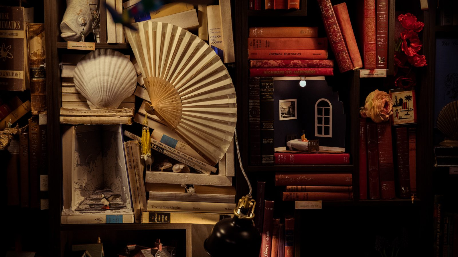 Close up of a wall covered in various items such as books, paper fans, sheels and ornaments