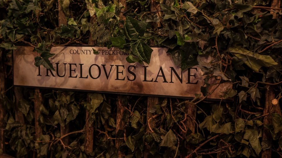 Streets sign covered in green vines